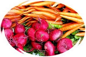 котлеты из моркови со свеклой