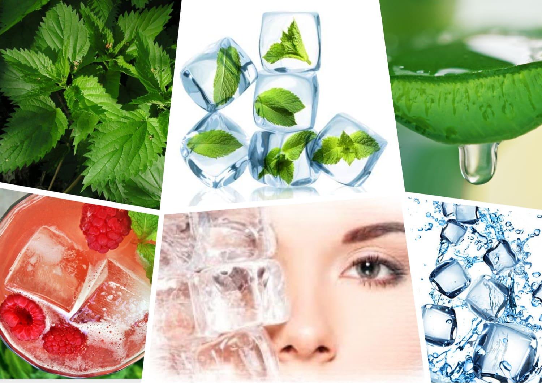рецепты косметического льда для лица