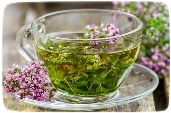 растительные чаи для похудения