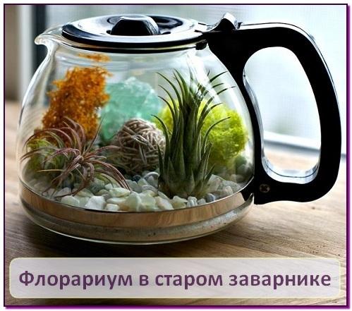 mini-florarium