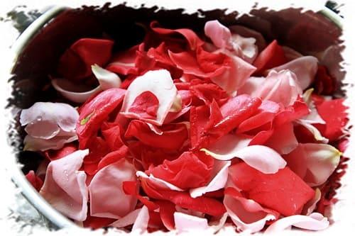 чем полезна роза для кожи, розовые лепестки