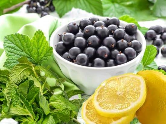 освежающий лимонад с мятой и смородиной