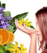ароматерапия при стрессе, профилактика стресса