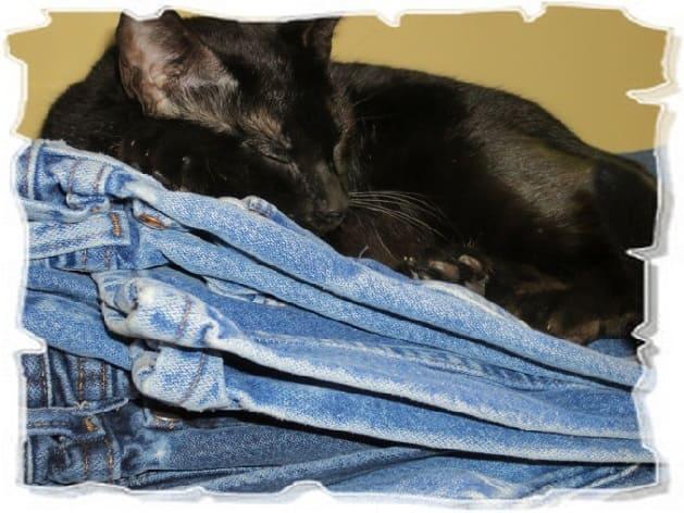 Поделки из старых джинсов: часть 2