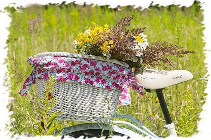 успокаивающие травы, подушка из трав