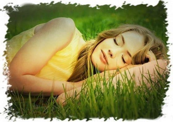 подушка из трав, подушка для хорошего сна, растения против бессонницы