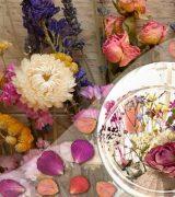 как красиво засушить цветы