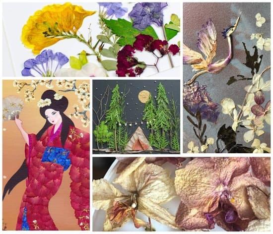 картины из сушеных цветов